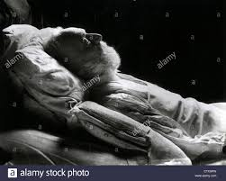 french author writer stock photos french author writer stock victor hugo 1802 1885 french writer on his deathbed stock image