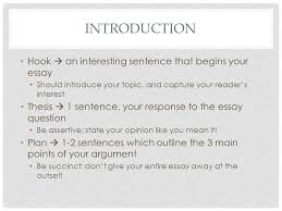 requirements and expectations the kite runner literary essay    introduction hook  an interesting sentence that begins your essay should introduce your topic  and