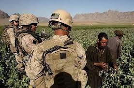 Resultado de imagen para La lucha contra la droga, pretexto para militarizar, controlar y generar violencia en América Latina