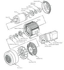 wiring diagram dayton ac electric motor wirdig on simple electrical wire diagrams