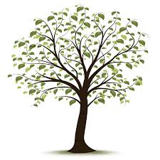 Image result for genealogy clip art free