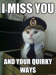 I miss you and your quirky ways - Captain kitteh - quickmeme via Relatably.com
