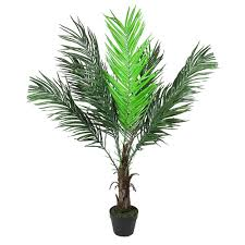 "Northlight 47.25"" Potted Brown and Green <b>Artificial Phoenix Palm Tree</b>"