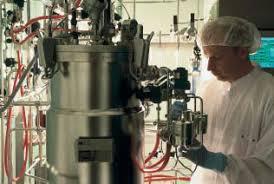holger zimmer immobilisierung von quecksilber in kontaminierten boden mittels schwefelhaltiger reagenzien