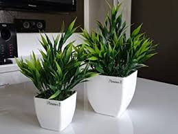 PLANTERS <b>Artificial Bamboo Plants</b> & White Pearl Pot (Pack of 2 ...
