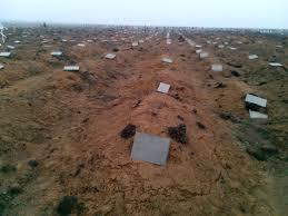 Прокуратура Нидерландов намерена найти и допросить ключевых свидетелей катастрофы MH17 - Цензор.НЕТ 9306