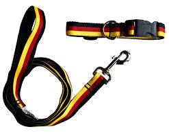 <b>German Flag Dog</b> Collar & Leash Set – Rare Dirndl
