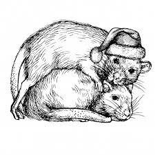 Эскиз двух крыс в шапке <b>санта</b>-клауса. пара крыс. реалистичные ...