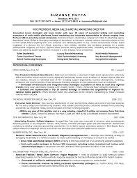 Vice President of Sales Resume Resume Sampl great vp of sales   car for sale signs printable   ipnodns ru