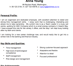 pages traditional cv template resume free traditional resume templates