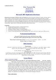 standard resume format download resume the standard resume format standard resume format template