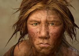 Neanderthals Used Plants For Medicine