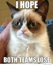 Grumpy Cat On The Super Bowl – Meme | WeKnowMemes via Relatably.com