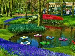 المناظر الطبيعية في هولندا Images?q=tbn:ANd9GcQv0zjVI9s0Z_PrLEoCwgqzUBACl6lm0axa_PjGHUi1VL1NAMsLgA