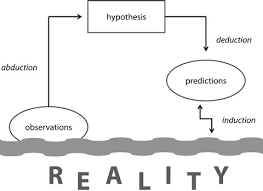 the three stages of scientific inquiry  from abduction and    figure    the three stages of scientific inquiry  from abduction and induction