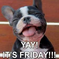Happy Friday! #tgif #dogs | Dog Sayings & Cute Posts | Pinterest ... via Relatably.com