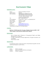 CV and Resume Writing Service  Professional     Years Experience