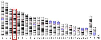 Alpha-synuclein
