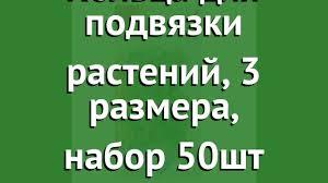 <b>Кольца для подвязки растений</b>, 3 размера, набор 50шт (Архимед ...