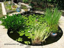 diy patio pond: midsize oval pond with flat stone surround