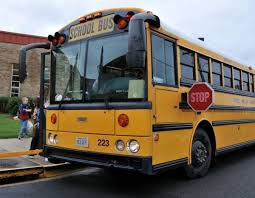 Image result for school bus pics