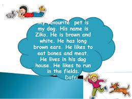 my favourite pet dafni  my favourite pet