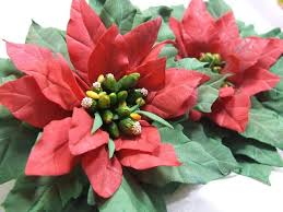 "Workshop ""<b>Christmas flower</b> Poinsettia"" | American Cultural Center"