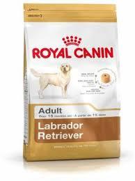 <b>Royal Canin Labrador Retriever</b> Adult 3 kg Dry Adult Dog Food ...
