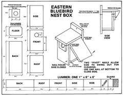 Lovely Bluebird House Plan   Bluebird House Plans   Smalltowndjs comLovely Bluebird House Plan   Bluebird House Plans