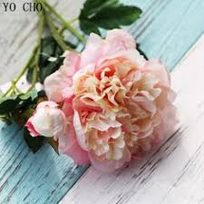 Cheap flower seeds and bulbs, Buy Quality hydrangea green ...