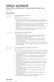 digital marketing consultant resume samples junior travel consultant resume