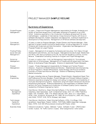 resume professional summary sample unique project management resume professional summary sample management summary sample inventory count sheet management summary sample statement resume examples
