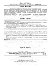 executive resume examples and samples  seangarrette coexecutive