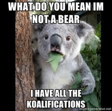 koala.jpg via Relatably.com