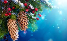 زيتة عيد الميلاد Images?q=tbn:ANd9GcQwFhC516zTdMPZgGP-VveDKwE0ty-7Fsjw2q6tSX2UgsbO7sCy