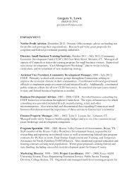 him director resume s director lewesmr sample resume non profit director resume sle vp