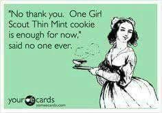 THIN MINT MEME | Girl Scouts: cookies | Pinterest | Thin Mints ... via Relatably.com
