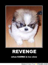 Evil Fluffy Dog Meme Generator - Captionator Caption Generator - Frabz via Relatably.com
