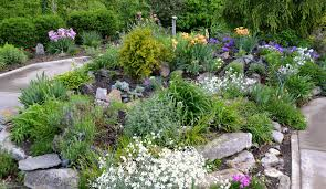 rock landscaping design ideas acres wild landscape garden design gardens pinterest zero scape focal points and backyard landscaping ideas rocks