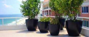 <b>Fiberglass</b> Planters, Plant Containers <b>Wholesale</b> - NewPro Containers