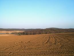 An estimated 1.9 billion hectares of soil is degraded worldwide