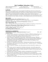 resume template best photos of examples professional services 79 surprising examples of professional resumes resume template