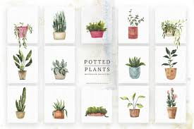 <b>Watercolor Potted Plants</b> ~ Illustrations ~ Creative Market