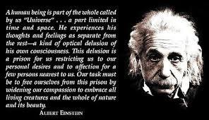 Einstein Quotes On Government. QuotesGram via Relatably.com