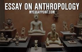 essay on anthropology  my essay point essay on anthropology