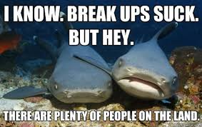 Sympathetic shark | Memes | Pinterest | Sharks via Relatably.com