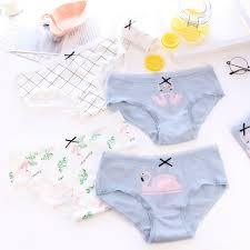 Online Shop New 4pcs Teenage Flamingos <b>Underpants</b> Young <b>Girl</b> ...