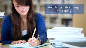 How to write essays faster   Select Best Custom Writing Service                  english afrikaans essay translator