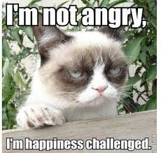 Grumpy cat is not angry - Let's have some fun.. Let's have some fun.. via Relatably.com