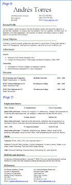 it cv example   free and professional cv example    cv plazapreview of it cv